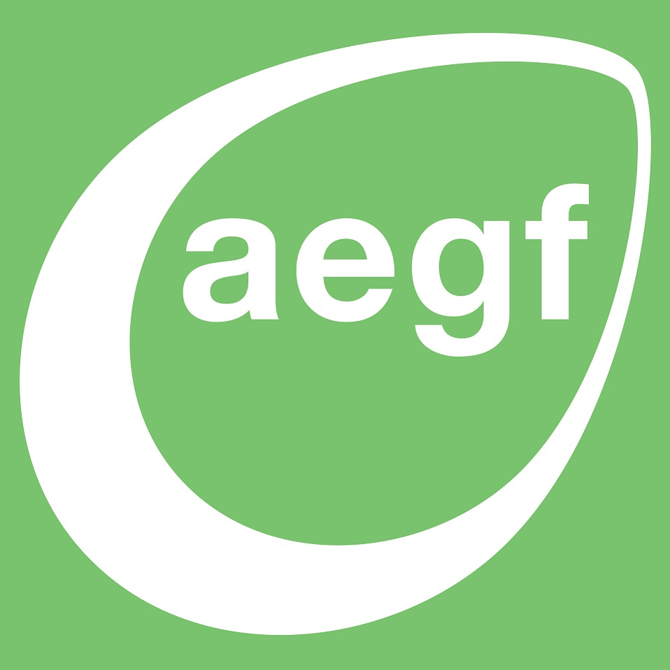 The Advantage Early Growth Fund logo